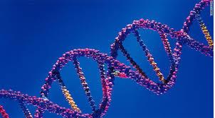 capture-genes